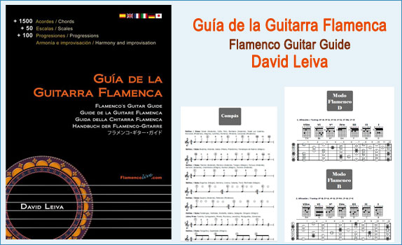 11-Guia Guitarra Flamenca, David Leiva